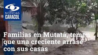Familias en Mutatá, Antioquia, temen que una creciente arrase con sus casas