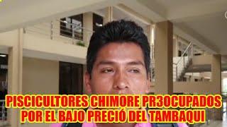 PSICULTORES DE CHIMORE PR3OCUPADO DE MERCADO Y EL BAJO PRECIÓ DEL PESCADO TAMBAQUI..