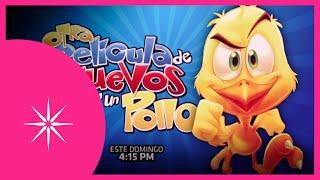 Otra películas de huevos y un pollo: Omelet de diversión | Este domingo #ConLasEstrellas