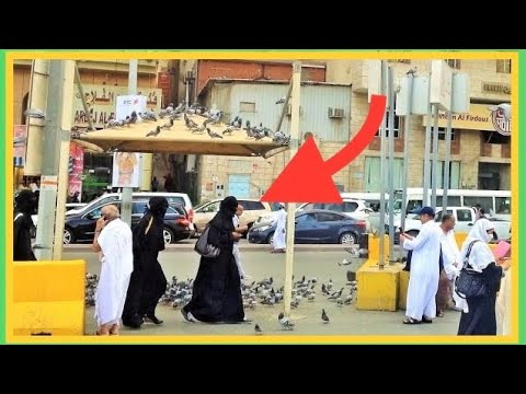 ✔ Makkah Madinah Street Life Scenes People Saudi Arabia Travel Guide Ramadan 2018