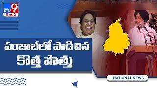 Akali Dal, Mayawati's Party Form Alliance Ahead Of Punjab Polls - TV9 - TV9