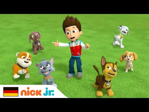 Paw Patrol Skye And Sweetie And Everest Music Video Tomclip