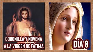 Coronilla de la Misericordia y Día 8 Novena a la Virgen de Fátima | 11 de Mayo