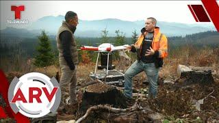 Incendios forestales: Revelan cómo usarán la tecnología para reforestar bosques   Telemundo