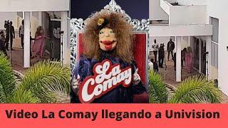 Video La Comay llega caminando a Univision Que Bochinche!!