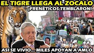 ¡ MEXICANOS APOYAN A AMLO ! MILES MARCHAN AL ZOCALO EN APOYO A AMLO ¡ EL TIGRE RUGE A FRENAAA !