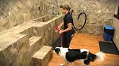 Business matters self serve dog wash reaches robbinsdale youtube 049 pet evolution self solutioingenieria Gallery