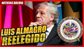 ???? Luis Almagro es reelegido como secretario general de la OEA ????