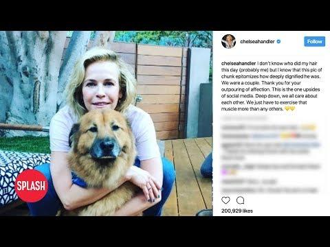 connectYoutube - Chelsea Handler Mourns Beloved Dog 'Chunk' | Daily Celebrity News | Splash TV
