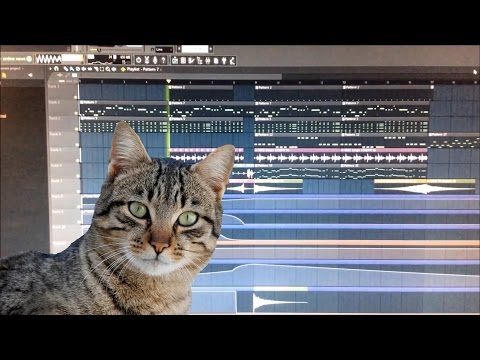 connectYoutube - How To Make A Meowing Cat Song