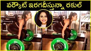 Actress Rakul Preet Singh Doing Heavy Gym Workouts | Rajshri Telugu - RAJSHRITELUGU