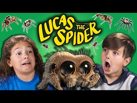 connectYoutube - KIDS REACT TO LUCAS THE SPIDER