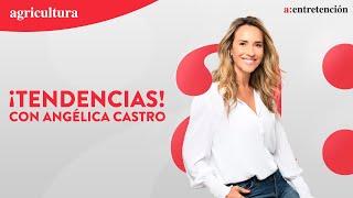 TENDENCIAS CON ANGÉLICA CASTRO - 31 DE MAYO 2021