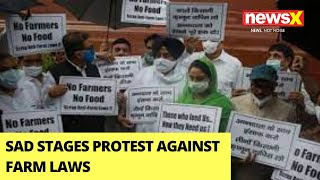 SAD Stages Protest Against Farm Laws At The Parliament   NewX Ground Report   NewsX - NEWSXLIVE