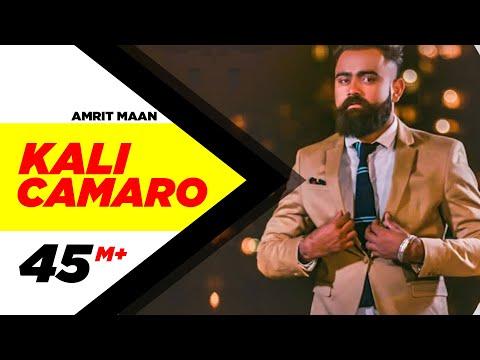 KAALI CAMARO LYRICS - Amrit Maan | Punjabi Song