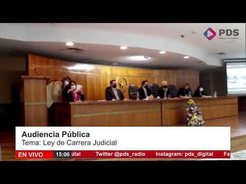 Audiencia Pública-  Ley de Carrera Judicial- Juez Carlos Hermosilla