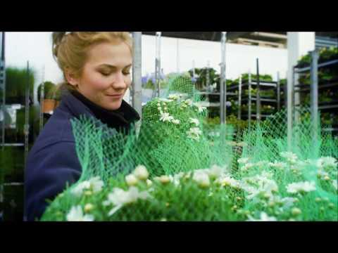 Mester Grønn - Norges ledende blomsterkjede
