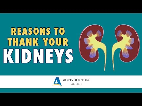 Reasons to Thank Your Kidneys - March 2017 Webinar