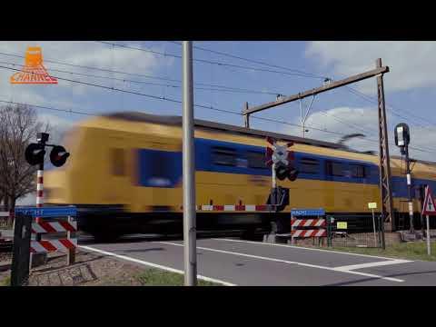 DUTCH RAILROAD CROSSING - Punthorst - Dekkersweg