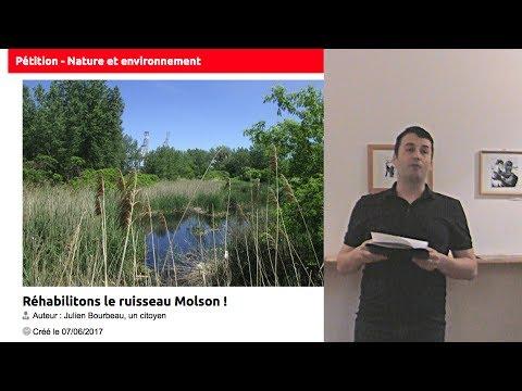 Survol historique des propositions pour la réhabilitation du Molson par Julien Bourbeau
