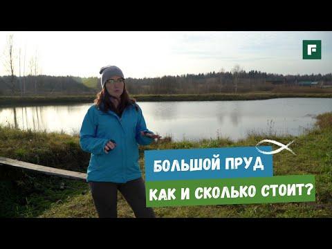 Недорогой пруд: советы от хозяйки подмосковного водоема // FORUMHOUSE