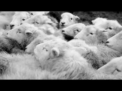 Vidéo de James Rebanks