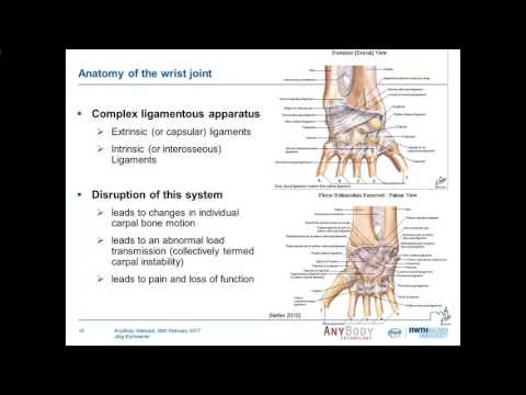[Webcast] - Development of a biomechanical model of the wrist joint for patient-specific modeling