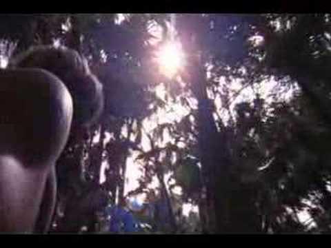 Quiksilver Young Guns 4 Trailer