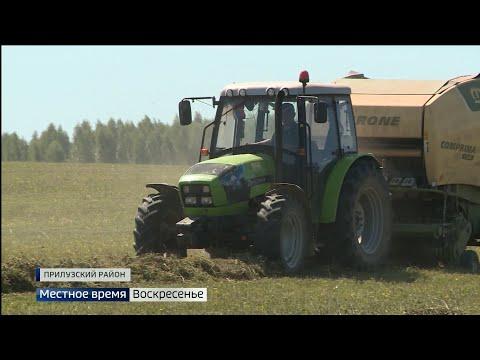 Засуха поставила под угрозу работу сельхозпредприятия «Южное»
