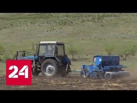 Государство поддержит сельское хозяйство Бурятии