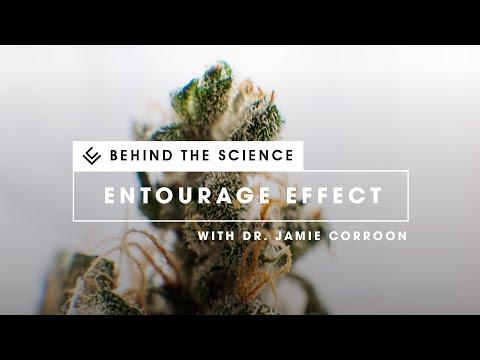 Behind the Science: Terpenes and Terpenoids