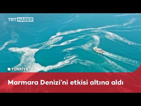 Marmara kıyılarındaki müsilaj havadan görüntülendi