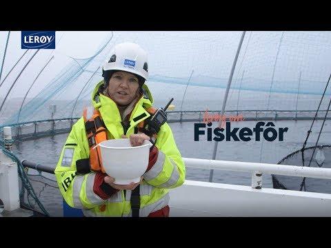 Lerøy om Fiskefôr
