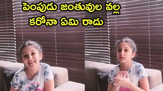 Sitara Cute Message To Pet Lovers | Sitara About Corona Effects On Pets | - RAJSHRITELUGU