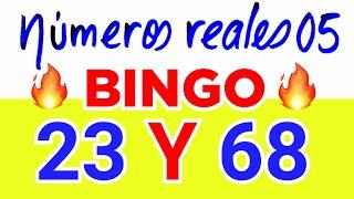 NÚMEROS PARA HOY 13/05/21 DE MAYO PARA TODAS LAS LOTERÍAS....!! Números reales 05 para hoy.....!!
