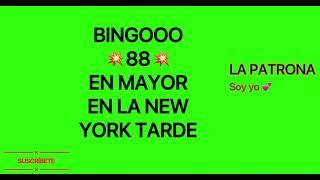 BINGOOO 88 EN MAYOR EN LA NEW YORK TARDE ( LA PATRONA SOY YO )