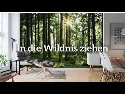 DE   Wall murals   18 sec   Youtube 1080p