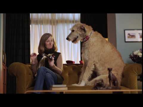 Auto Trader TV advert 2016 – Dealer Reviews
