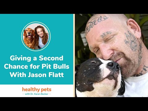 Giving a Second Chance for Pit Bulls With Jason Flatt