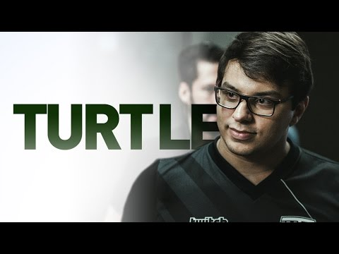 Vlog INTZ #11 - Turtle