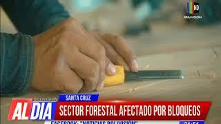 Sector forestal en crisis por el impacto de los bloqueos
