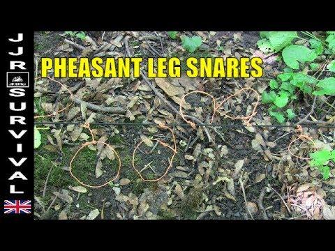 Pheasant Leg Snares