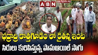 CM KCR  Supports Farmers For Palm Oil Cultivation In Telangana | ABN Telugu - ABNTELUGUTV