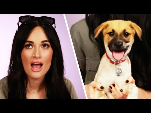 Kacey Musgraves Plays With Puppies While Answering Fan Questions