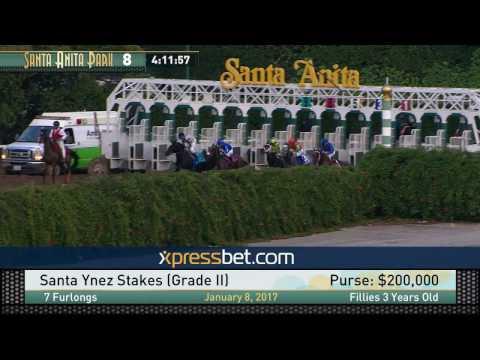 Santa Ynez Stakes (Gr. II) - Sunday, January 8, 2017