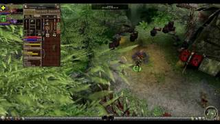 Dungeon SIege 2 SPEEDRUN - ONLY MAGES, ALL QUESTS (PART 1: Northern Greilyn Jungle)