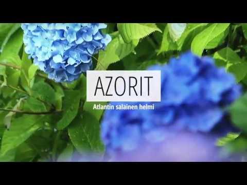 Azorit - Matkavekka