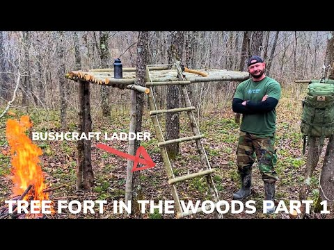 Building a Tree Fort In The Woods Part 1 and Grilled Cheese, Turkey and Ham with Tomato Onion Soup