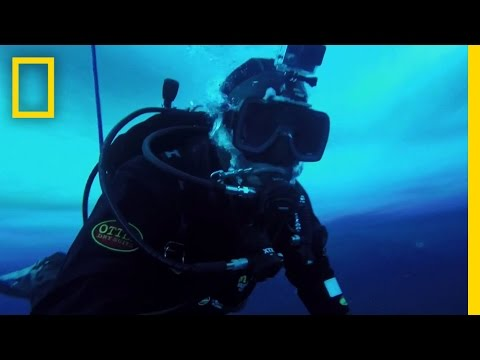 Under Sea Ice in Antarctica   Explorer