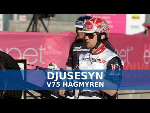 V75 tips Hagmyren   Mats E Djuses V75-analys
